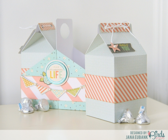 Milk Carton by Jana Eubank for 3 Birds Studio 02