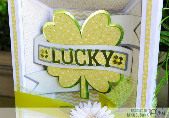 Shamrock Frame by Jana Eubank for 3 Birds Studio  using the Graceful Season Collection