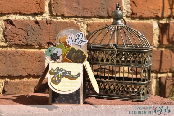 Hello You Box Card by Katrina Hunt for 3 Birds Studio Graceful Season Midday Medley Stamp Kit HSN.com 3birdsdesign.com