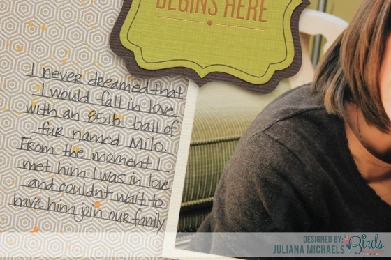 Our-Story-Begins-Here-Scrapbook-Page-Juliana-Michaels-3-Birds-Studio-Midday-Medley-02