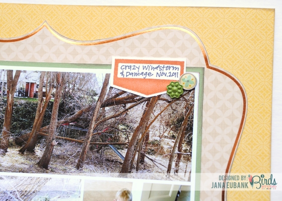 Remember Scrapbook Page by Jana Eubank for 3 Birds Design #3birdsdesign #middaymedley #scrapbookpage