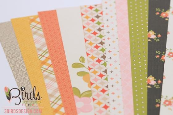 3 Birds Design Midday Medley Patterned Paper Pad #3birdsdesign #middaymedley #patternedpaper