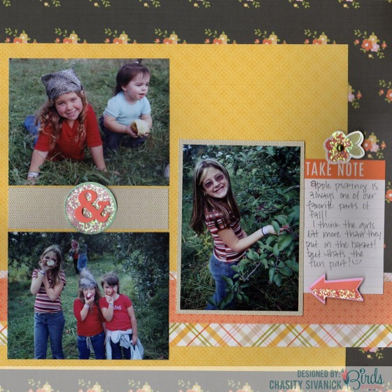 Apple_Picking_By_Chasity_Sivanick_For_3_Birds_Design_3