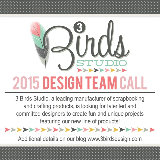 3 Birds Design Team Call 2015